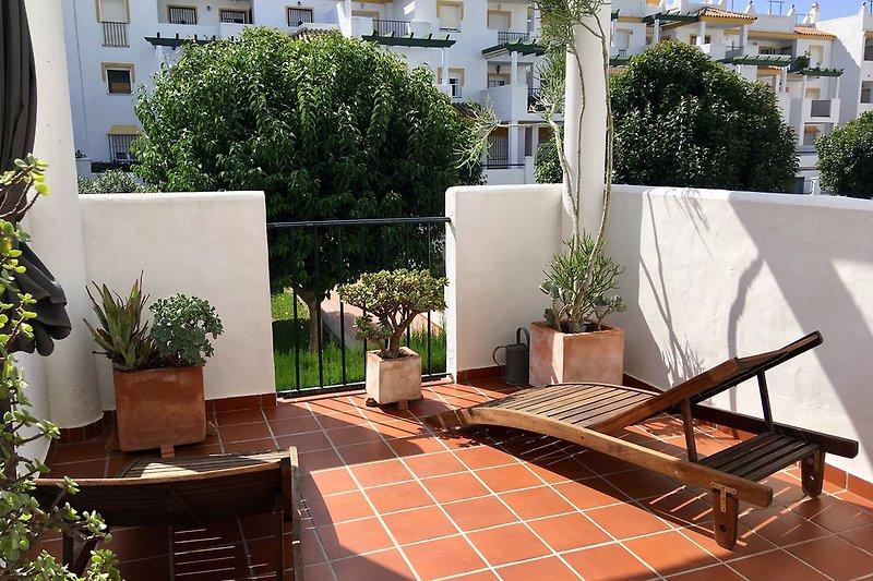 Terrasse mit Liegestühlen