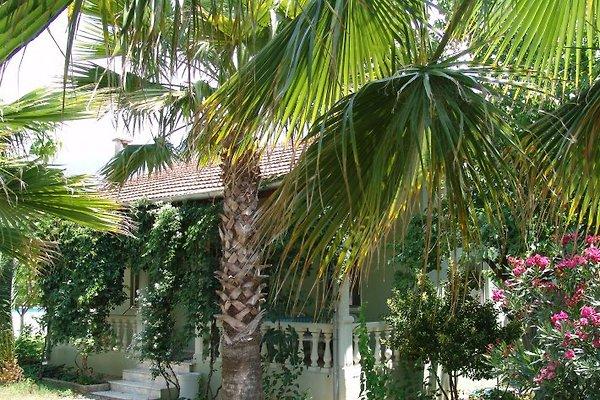 Ferienhaus in Köycegiz à Köycegiz - Image 1