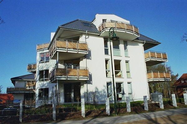MEERESRAUSCHEN en Heringsdorf - imágen 1
