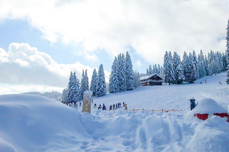 Winterliche Umgebung