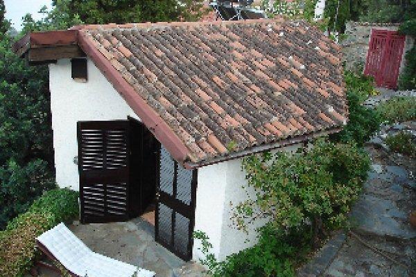 Kleine Terrasse vor dem Studio