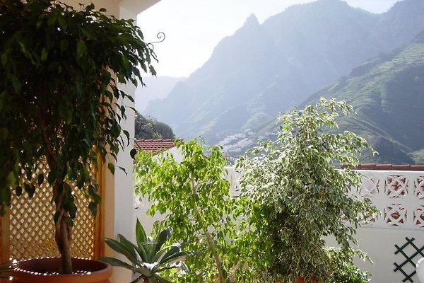 Appartement Miriam Gran Canaria à Agaete - Image 1