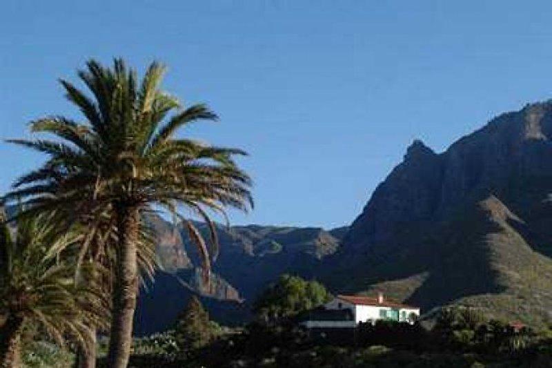 Casa Miriam Blick auf Tal von Agaete