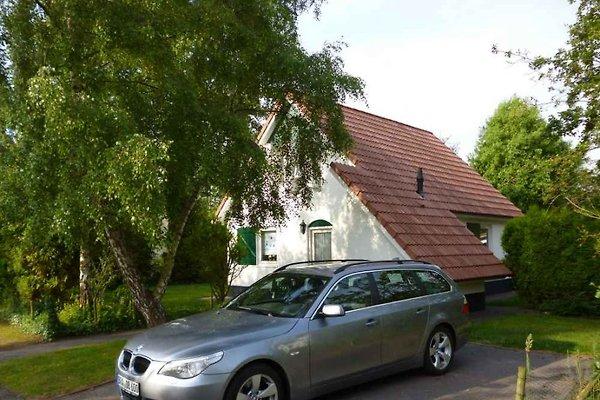 Ferienhaus Suyderoogh***** in Lauwersoogh - immagine 1