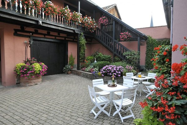 Weyer - Gites in Alsace  à Bergheim - Image 1