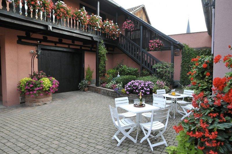 Weyer - Gites in Alsace  en Bergheim - imágen 2