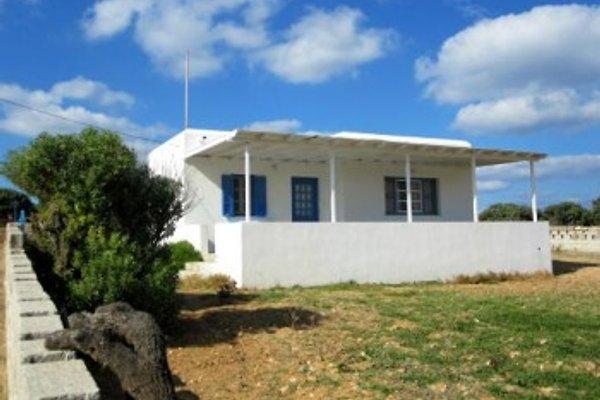 2 Ferienhäuser Michalis à Antiparos - Image 1