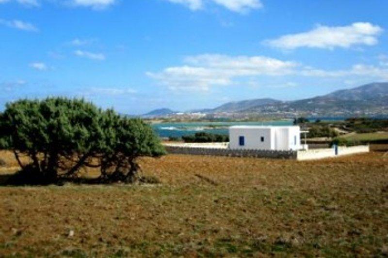 MICHALIS, das Meer und Paros
