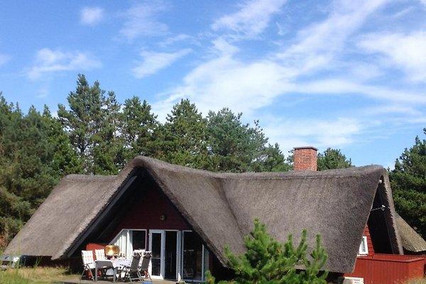Ferienhaus  en Rømø -  1