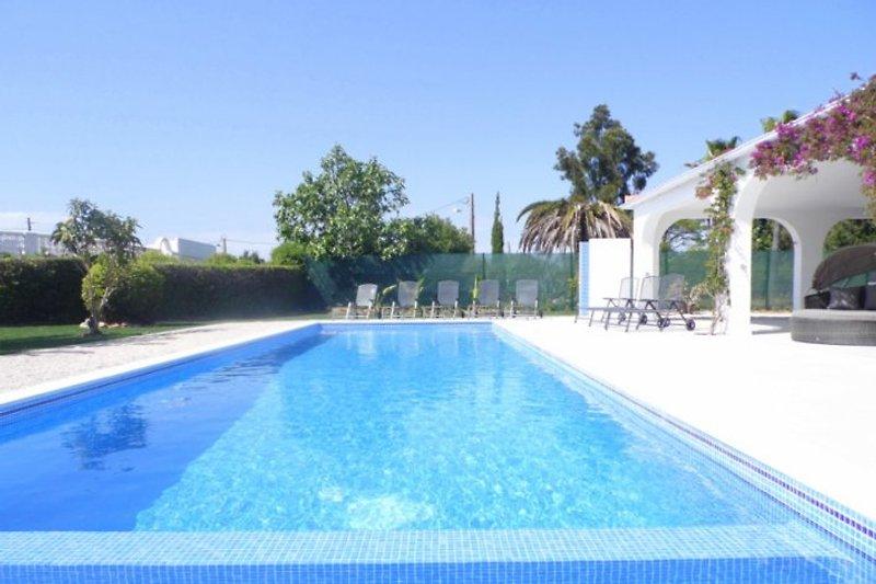 11m Pool