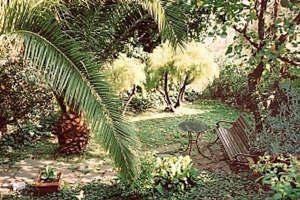 Villa Oppermann à Rio nell Elba - Image 1
