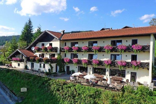 Grosses Ferienhaus für 8-20 P à Bodenmais - Image 1