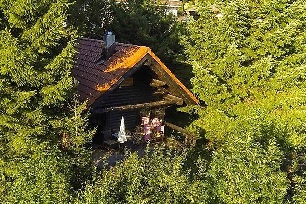 Romantische Hütte in Bodenmais in Bodenmais - Bild 1