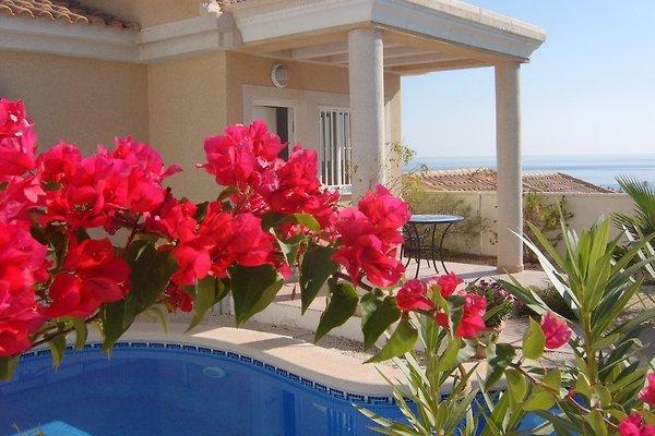 Casa Azul en Puerto de Mazarron - imágen 1