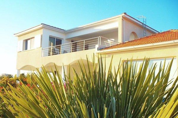 Haus Iris in Peyia - Bild 1
