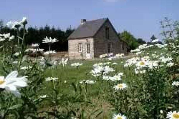 La Maisonnette Ferienhaus in Champcervon - Bild 1