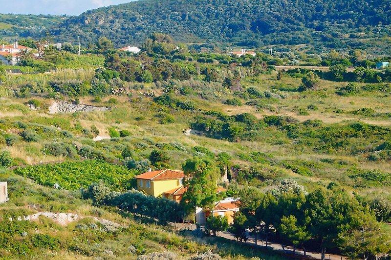 Idylisch im Grünen gelegen, Villa Nunzia