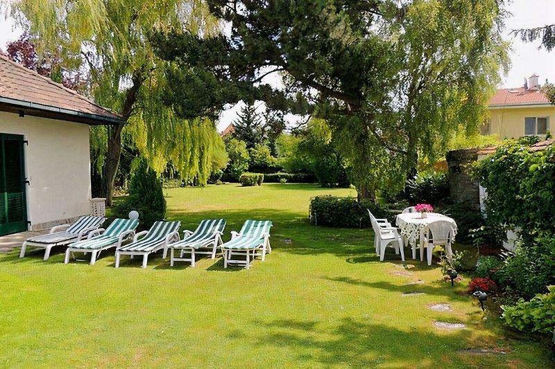 Garten- Blick von Terasse in Garten