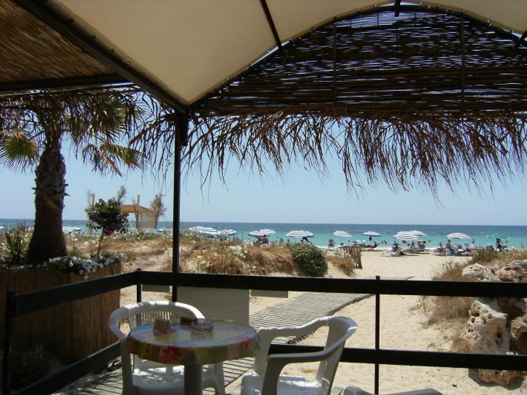 Monolocale della casa dell 39 olivo appartamento in salve for Costo della costruzione della casa sulla spiaggia