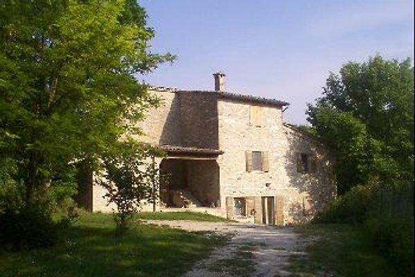 Calajala in Urbino - Bild 1
