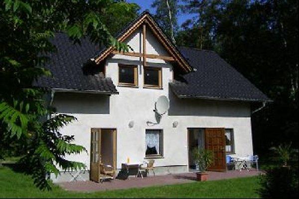 Vacances sur le lac Wolziger  à Heidesee - Image 1