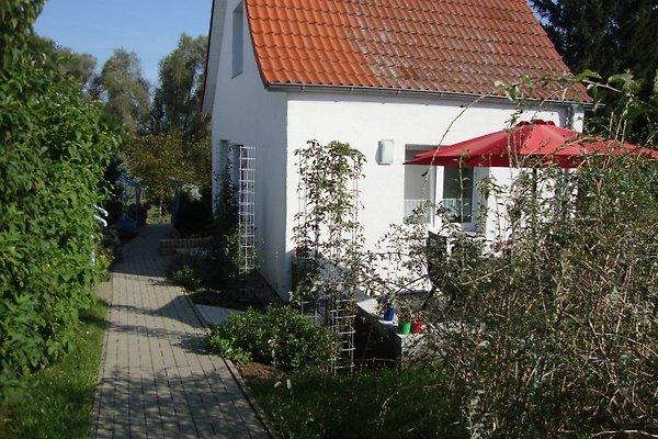 Ferienhaus Hamberger in Wolgast - Bild 1