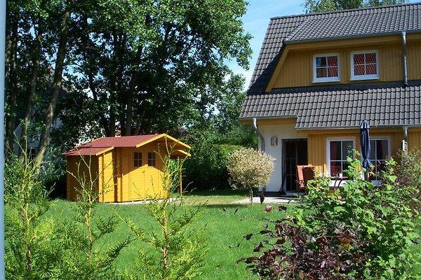 1a Ferienhaus Inselidylle  en Zinnowitz - imágen 1
