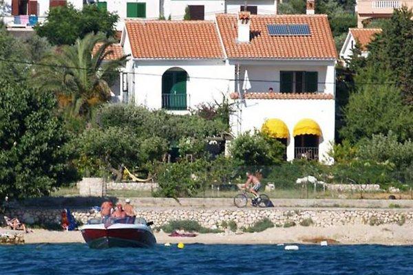 Ferienwohnungen Insel Rab in Barbat - immagine 1
