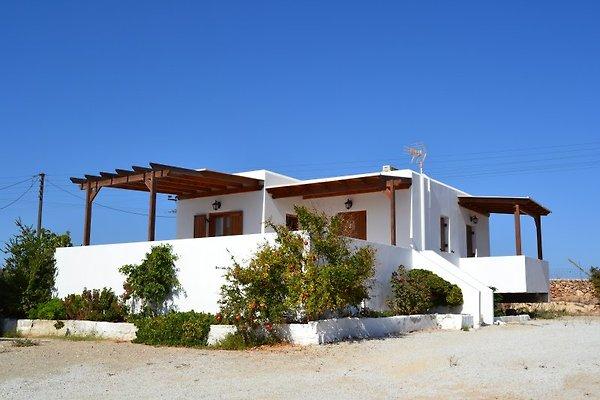 2 Häuser THANASSIS in Antiparos - immagine 1
