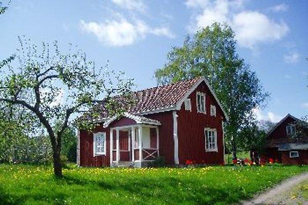 Röda Huset im Frühling