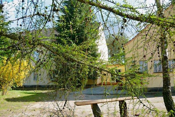 Ferienhaus in Nossentiner Hütte in Nossentiner Hütte - Bild 1