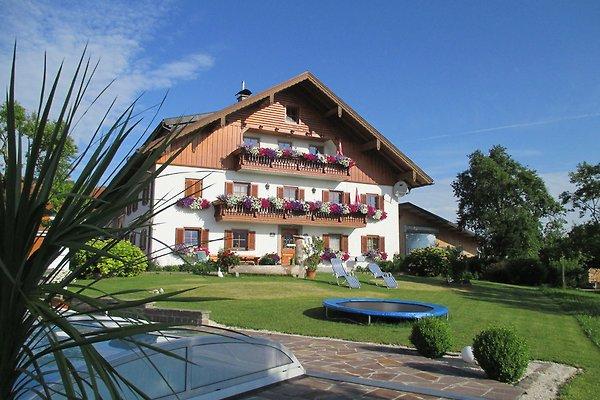 Panorama-Ferienhof Nußbaumer in Mondsee - Bild 1