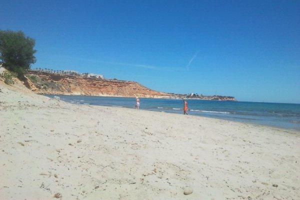 Casa Jamie Costa Blanca à Playa Flamenca - Image 1