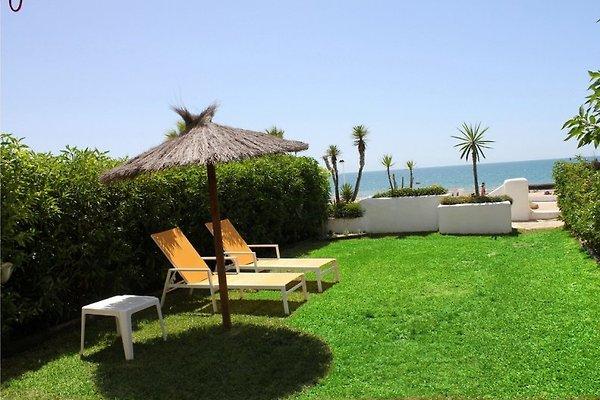 Casa Amparo in Matalascanas - Bild 1