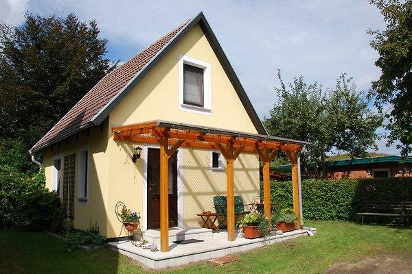 Ferienhaus  in Ahrenshoop - immagine 1