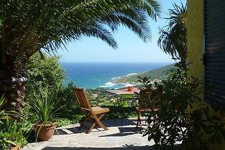 Palmier mit Meerblick und Garten