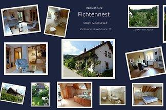 Fichtennest
