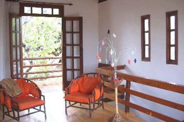 - Landhaus Am Alten Cajú-Baum in Salvador - Bild 1