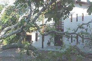 - Landhaus Am Alten Cajú-Baum