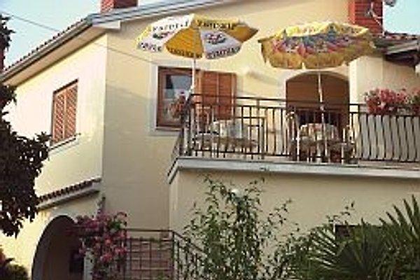 Haus Franka (App. 4 Pers.) in Tar-Vabriga - Bild 1