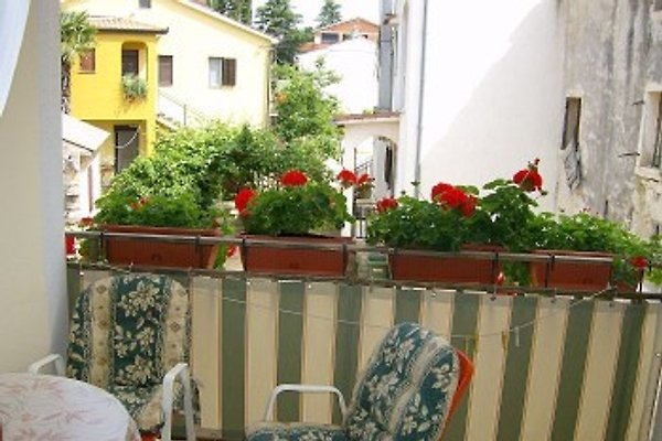 Haus Franka (App. 3 Pers.) in Tar-Vabriga - Bild 1