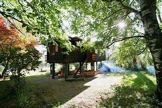 Unser Hüsli ist einzigartig. Es ist ein kleines Holzhaus auf Stelzen ,welches von meinem Grossonkel, Onkel und Vater gebaut  ist.  Einmalig idyllisch gelegen umgeben von Natur.