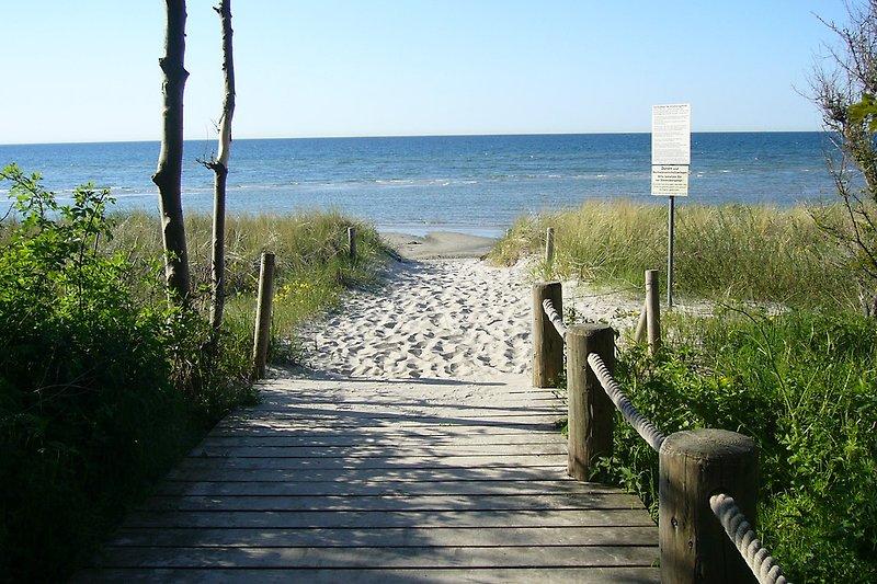 Strandzugang Schwarzer Busch