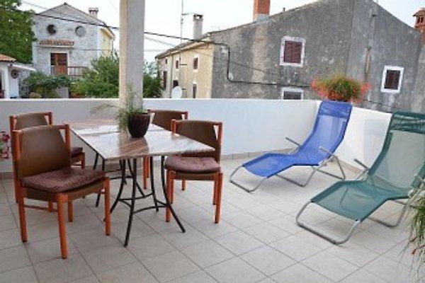 Appartement / Fe. Wo. Vinka à Funtana - Image 1