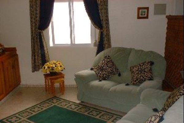 Guesthouse in Spain à San Enrique - Image 1