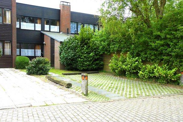 Cottage Ferienhaus Nieuwvliet-Bad à Nieuwvliet Bad - Image 1