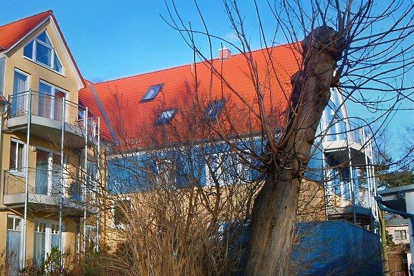 Villa Augusta en Boltenhagen - imágen 1