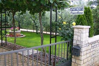 Villa Carolina A.04 / 2-3 pers