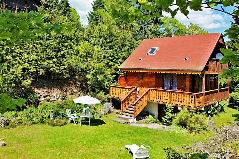 La Jonquille bleue des Vosges in Le Valtin - immagine 2