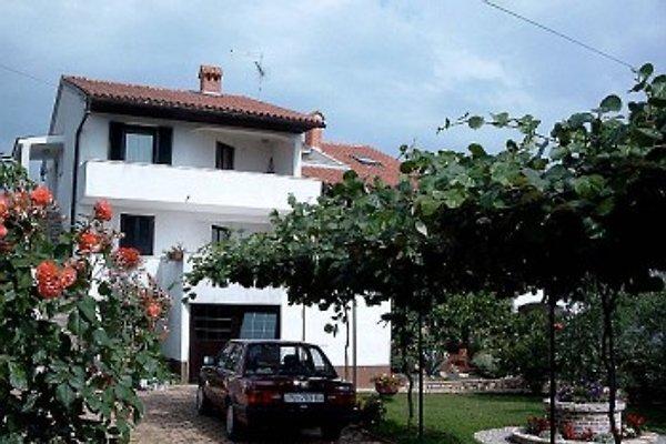 Villa Carolina in Tar-Vabriga